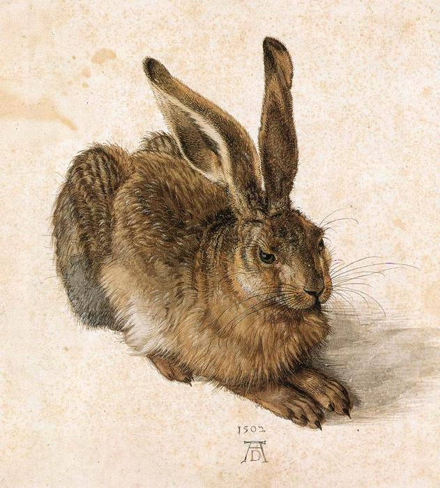 Order Painting Copy : Young Hare by Albrecht Durer | Most-Famous-Paintings.com